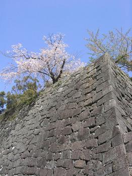 kumamoto06.jpg